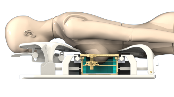 Visualisation of HYPMED PET-RF insert with patient in position